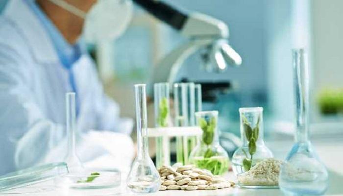 epigenetic modification in plants