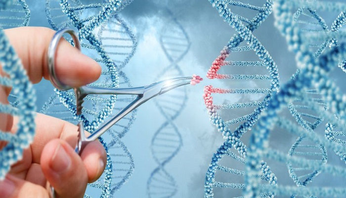 Gene therapy for therapeutic purposes